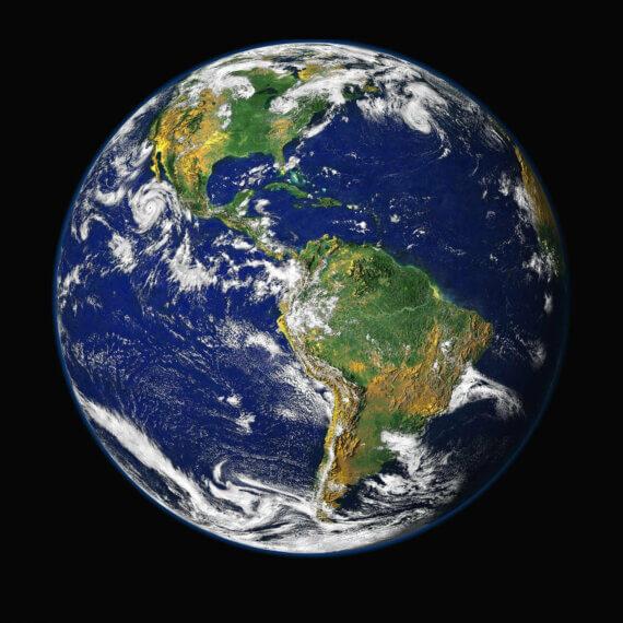 Urge the COP26 Climate Summit to Serve a 100% Vegan Menu