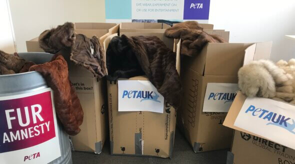 PETA Teams Up With 'Life for Relief and Development' to Give Unwanted Fur Coats to Those in Need