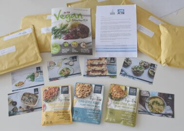 PETA and Good Catch Make Waves With Vegan Fish Giveaway for World Oceans Day