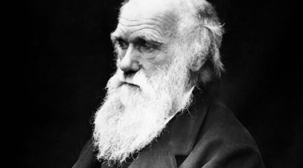 Charles Darwin's Home: Could It Become PETA's Animal Empathy Museum?