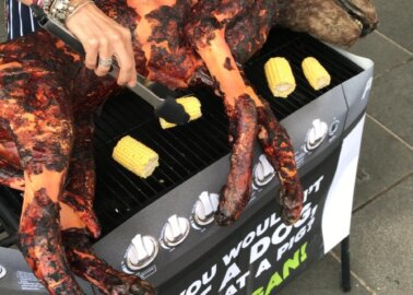 'Dog' Barbecued by Vegans in Southampton