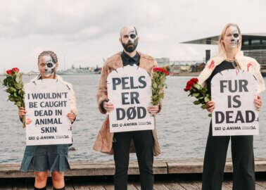 Painted Skeletons Storm Copenhagen Fashion Week With 'Fur Is Dead' Message