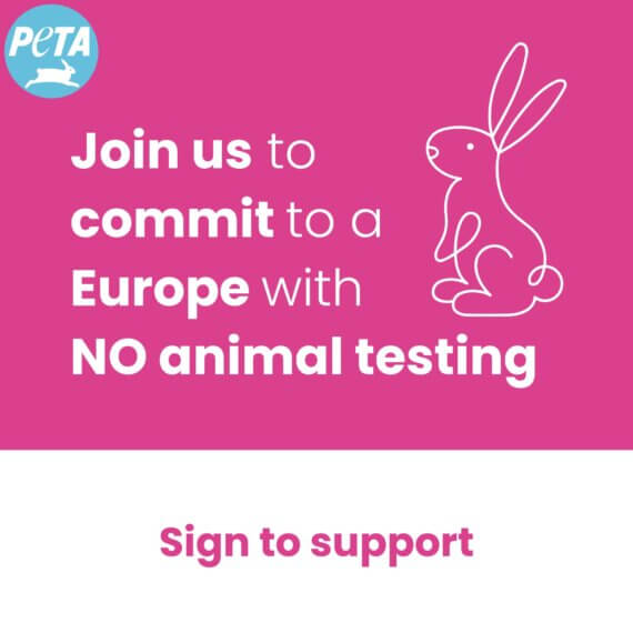 Hey EU, No Broken Promises—Keep Cosmetics Cruelty-Free!