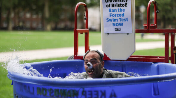 'Rat' Dunked in Tank to Protest Cruel Tests at University of Bristol
