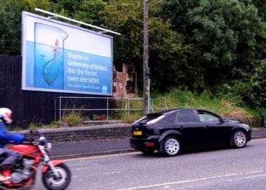 PETA Makes a Splash in Bristol With Drowning Rat Billboard