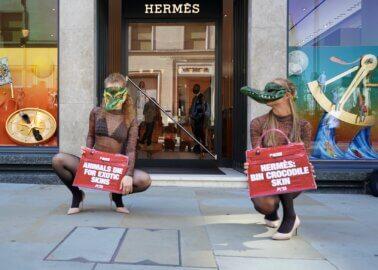 Hermès Store Hit With PETA 'Crocodile' Protesters