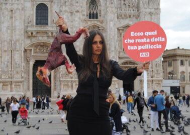 Rosita Celentano and PETA to Milan Fashion Week: Get Fur off the Catwalk